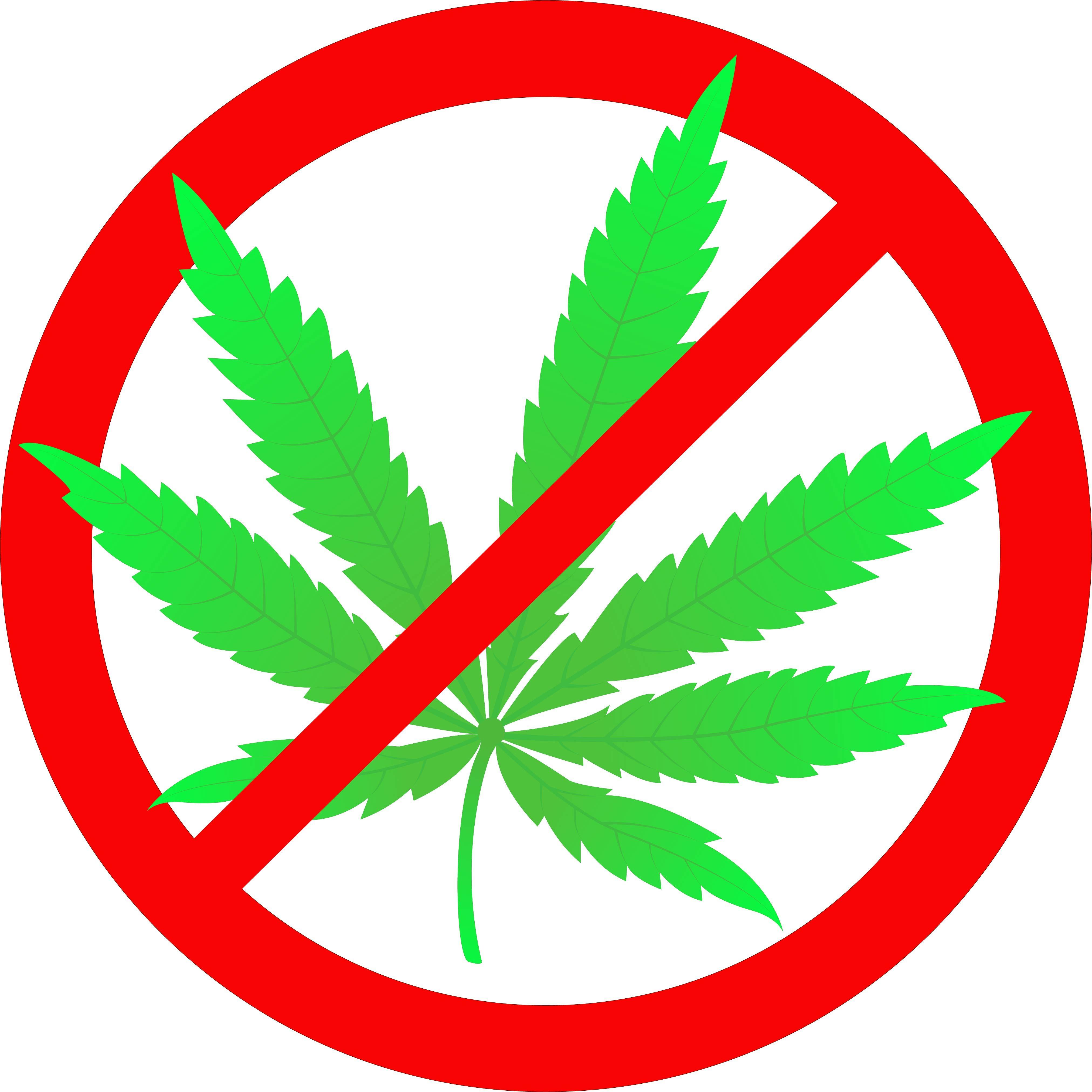 Image of a No Marijuana logo