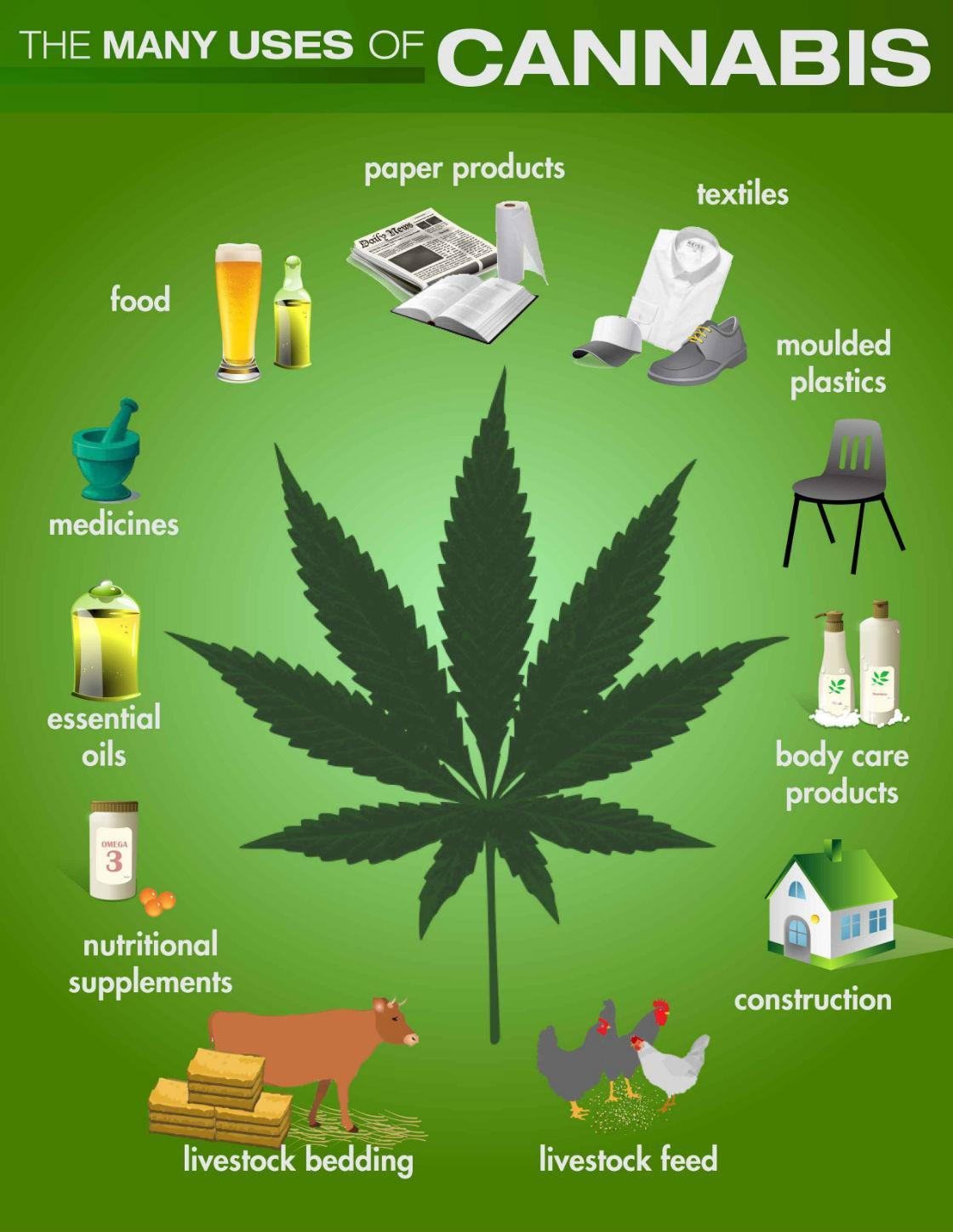 Chart on the ways Cannabis can be used