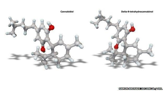 """Images of molecular models of """"real"""" cannabis chemicals"""