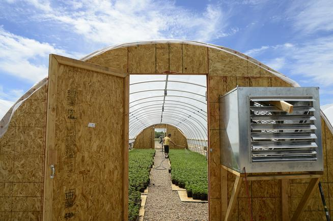 Image of a Colorado hemp green house