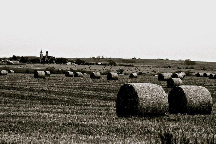 Kansas landscape/Photo Credit: Jenna Normandin, JN Photography.