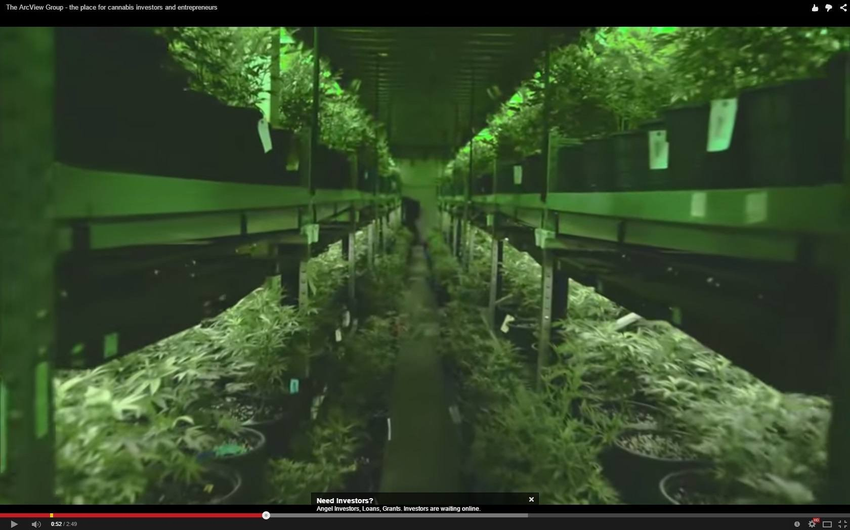 Image of You Tube video on Cannabis Investment