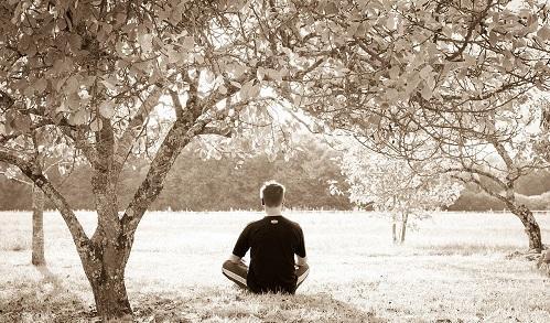 MeditationImageSebastienWiertzWikimediaCommons