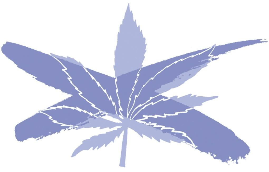 Seattle Times illustration of a marijuana leaf