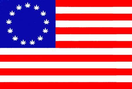 USFlagPotLeavesImageJackWittboldViaWikimediaCommons