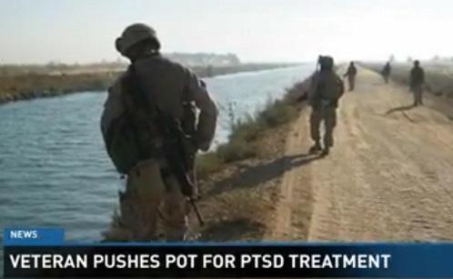 VeteransPTSDMMJVideoImage12newsnowDotCom