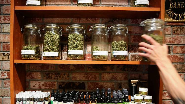 Image of legal medical marijuana in Colorado