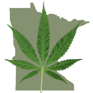 Minnesota state map with marijuana leaf